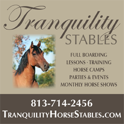 Tranquility Stables Logo