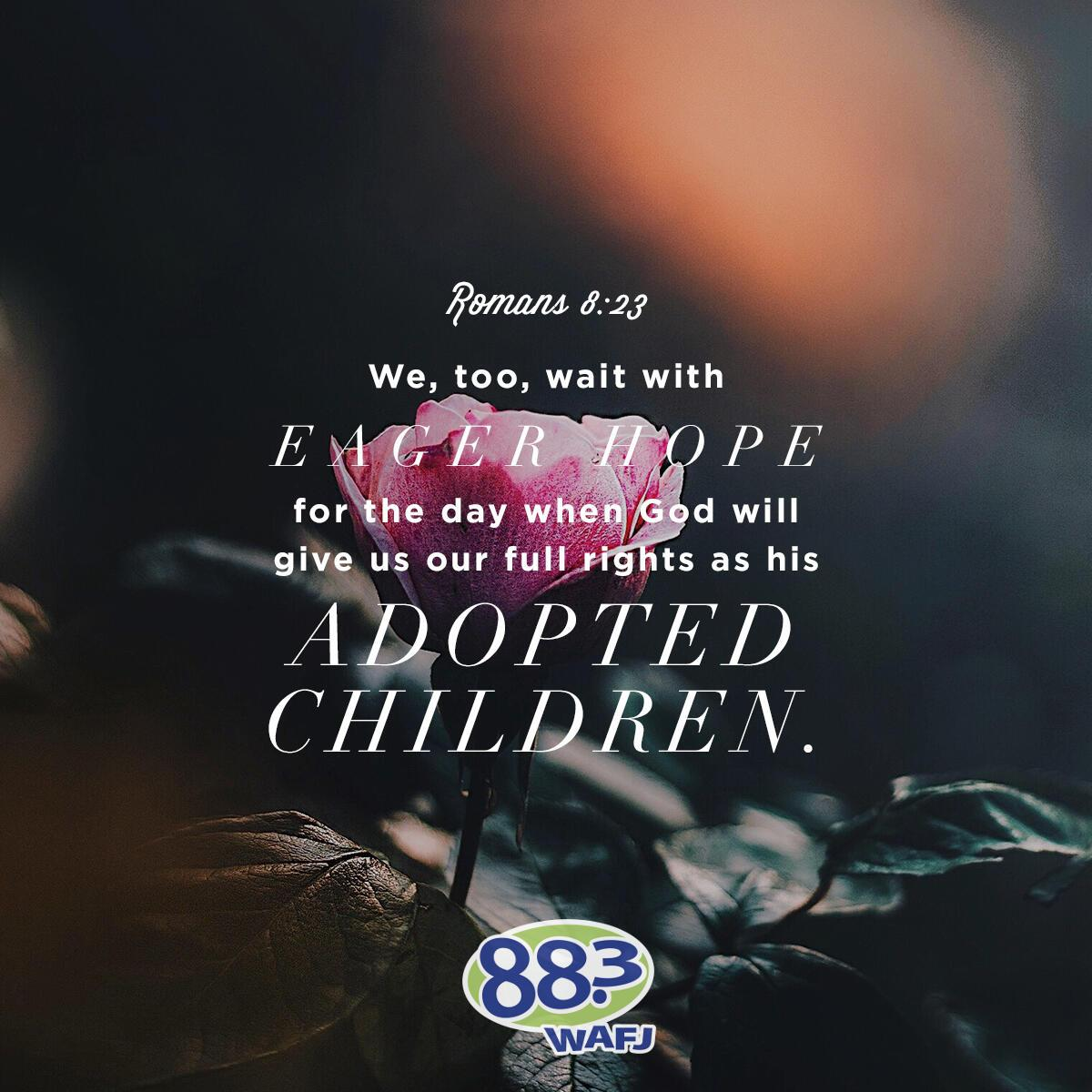Romans 8:23 - Verse of the Day